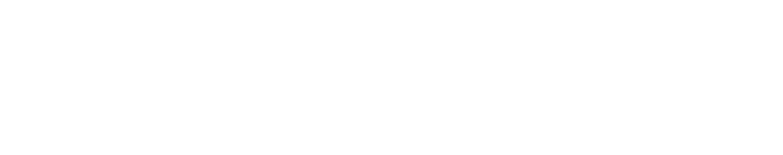 Ivanti Wavelink Logo